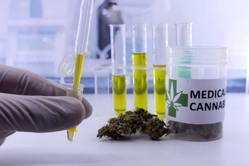 Cannabis Lab Testing